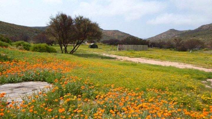 at Modderfontein Farm Campsite   TravelGround