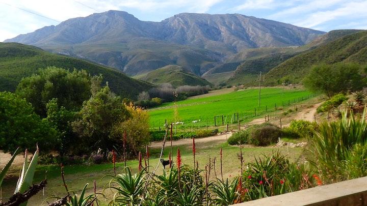 Klein Karoo Accommodation at Oudemuragie Guest Farm | TravelGround