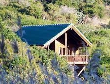Turaco Cabin