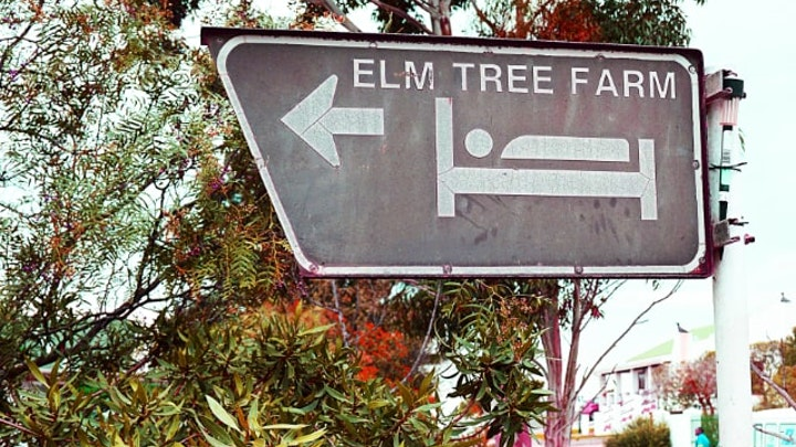 by Elm Tree Guest Farm | LekkeSlaap