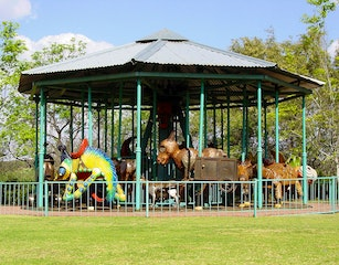 The African Carousel