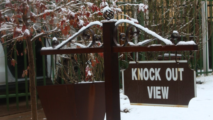 at Knock Out View | TravelGround