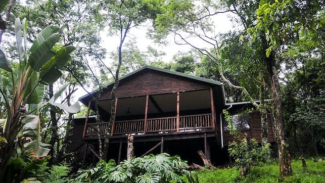 at Forest Bird Lodge | TravelGround