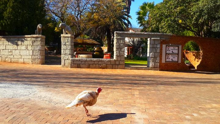 at Kumkani Country Lodge | TravelGround