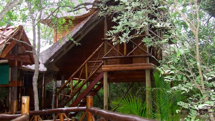 by Hornbill's Nest Tree Top chalets | LekkeSlaap