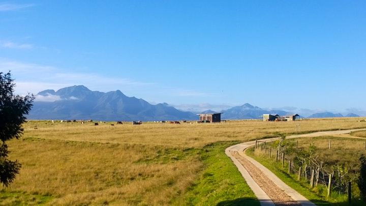 at Colnera | TravelGround