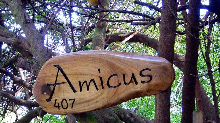 by Amicus | LekkeSlaap