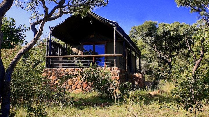 Waterberg Accommodation at Wild Ivory Eco Lodge   TravelGround