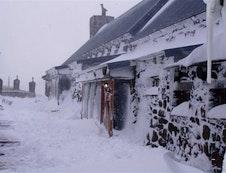 Winter At Tenahead