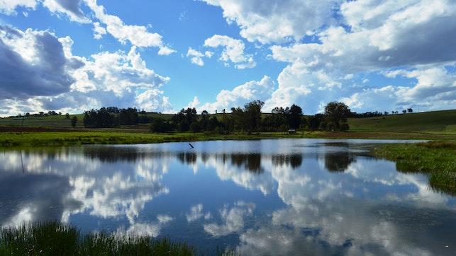by Tortoni Guest Farm & Caravan Park   LekkeSlaap