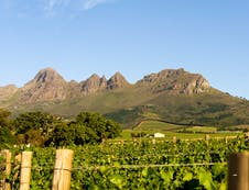 Our views on the Helderberg Mountain