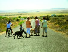Relax and take a walk or cycle