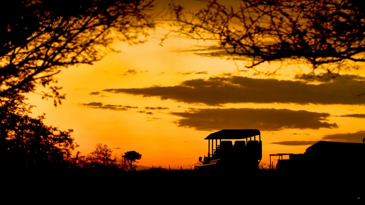 at Tala Collection Private Game Reserve | TravelGround