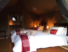 Twin-bedded tent