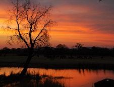 Sunset @ Zion