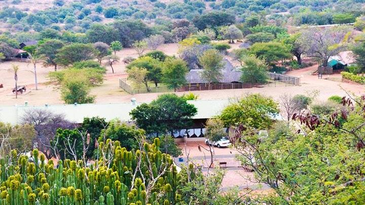 Bela-Bela Accommodation at Marula Oase | TravelGround