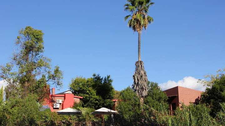 Oudtshoorn Accommodation at Gumtree Guest House | TravelGround