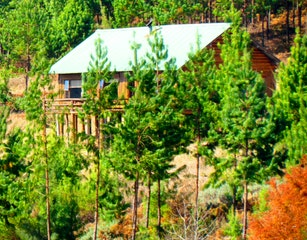 Single Storey Cabin