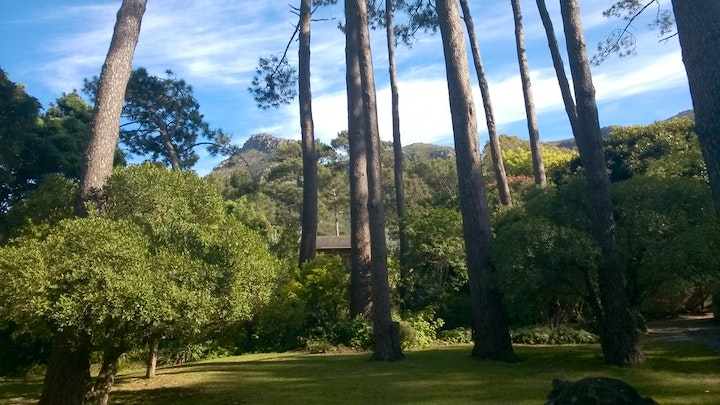 Hout Bay Accommodation at A Squirrels Nest | TravelGround