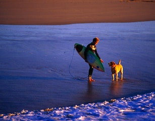 Surfer and his dog