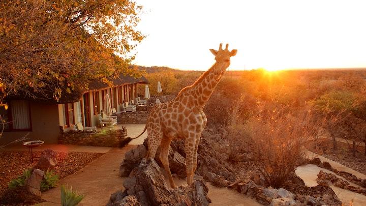 Kunene Accommodation at Okutala Etosha | TravelGround