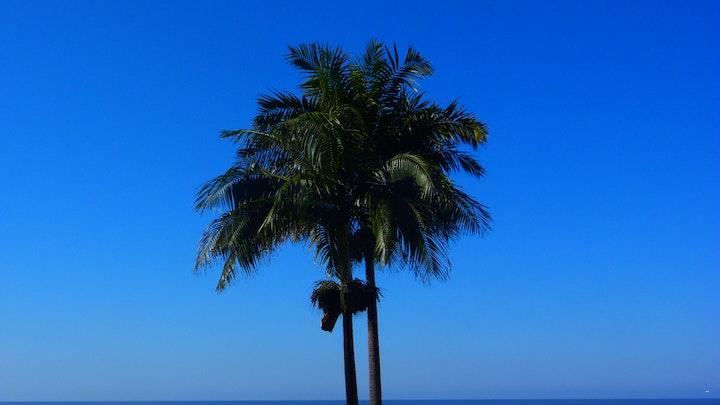 Margate Beach Accommodation at Boulevard A   TravelGround