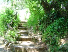 Pathway to the cottage