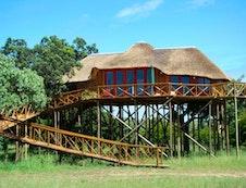 Dream Tree House Pezulu Tree House Lodge