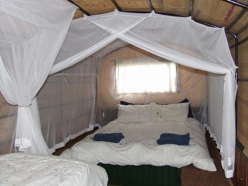 Image result for oxwagon lodge