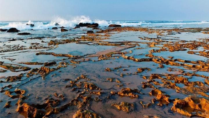 by Thonga Beach Lodge | LekkeSlaap