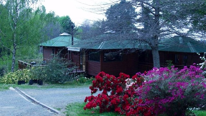 Hogsback Accommodation at Maple Grove in Hogsback   TravelGround