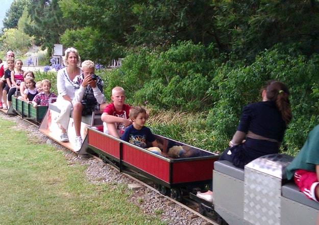 Mini Train Rides