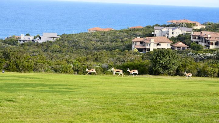Mosselbaai Gholflandgoed Akkommodasie by Mossel Bay Golf Estate | LekkeSlaap