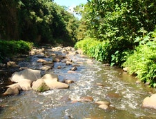 Umbilo River