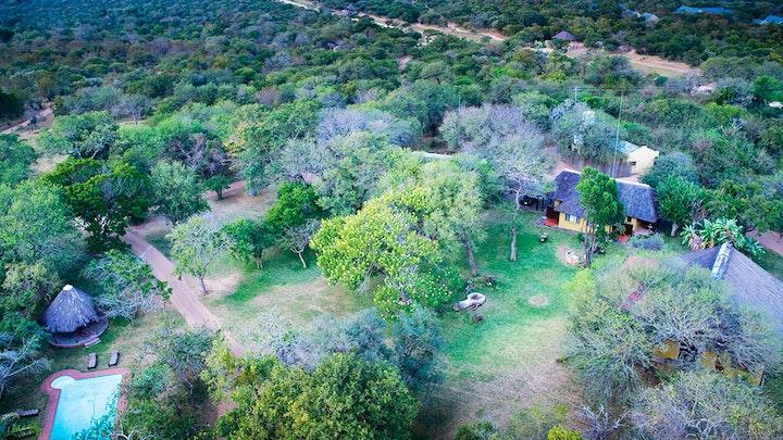 Thornybush Game Reserve Accommodation at Buffaloland Safaris - Giraffe Camp | TravelGround