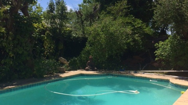 Rondebosch Accommodation at Olive Tree House Apartments | TravelGround