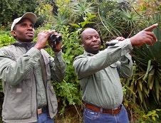 Birding at Kurisa Moya