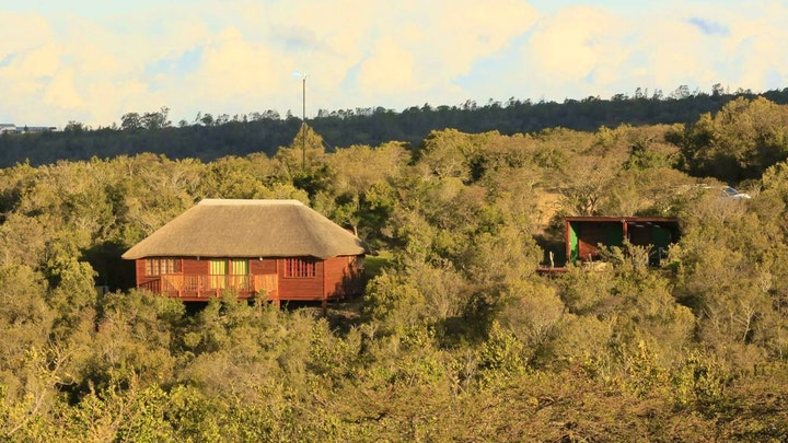 at Horseshoe Game Reserve | TravelGround
