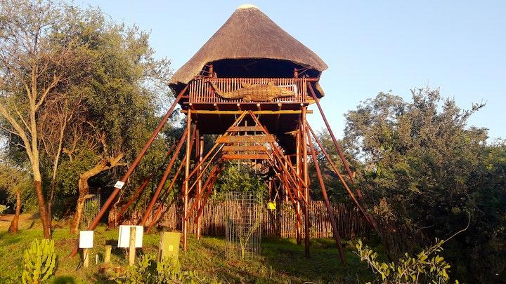 Marloth Park Accommodation at Bona Ngwenya Lodge | TravelGround
