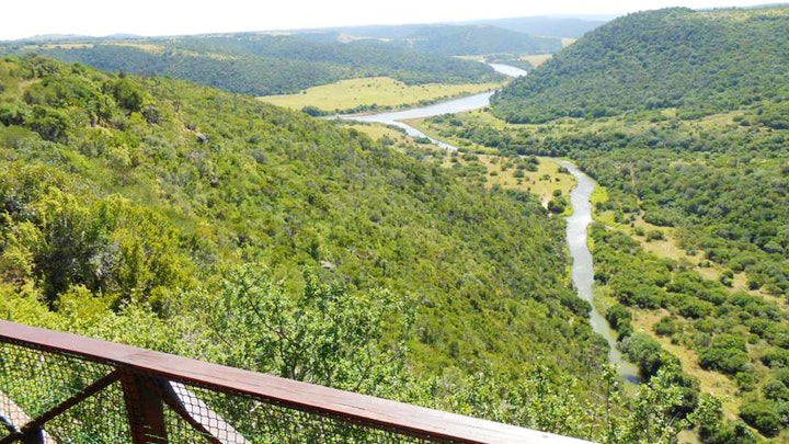 at Mansfield Game Reserve | TravelGround