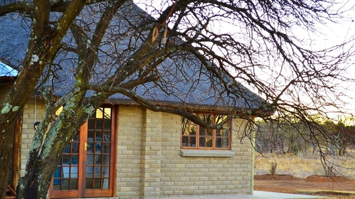 at Thorn Tree Lodge | TravelGround
