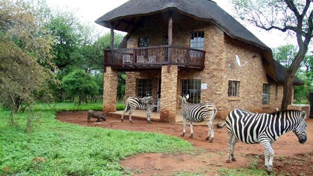 at Walking Tall Private Bush Retreat | TravelGround