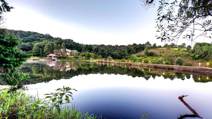 at Bramasole | TravelGround