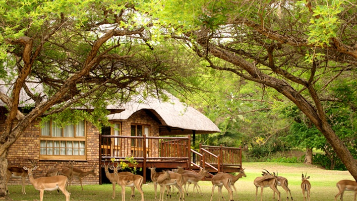 at Hoyo Hoyo 573 Kruger Park Lodge | TravelGround