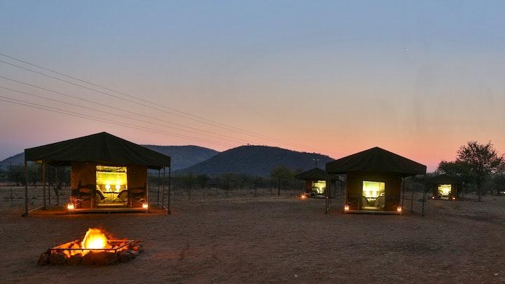 at Tented Adventures Pilanesberg | TravelGround