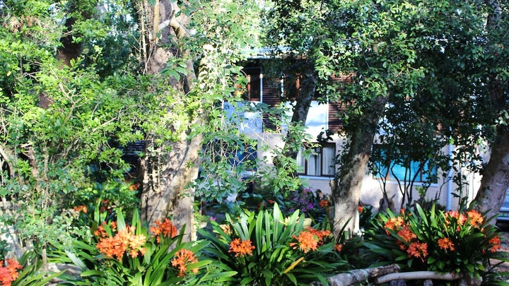 at Nature's Valley Health Retreat | TravelGround