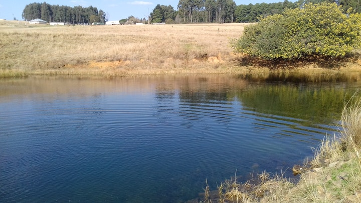 Elands Valley Accommodation at Dullstroom Ranch Farm House   TravelGround