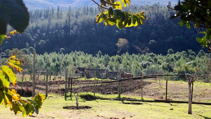 Suurbraak Accommodation at Ernadoon se Plek | TravelGround