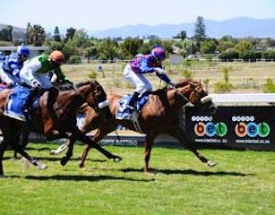 horse_racing_Durbanville_Racecourse