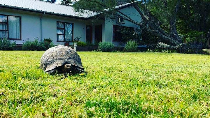 Kouga-Omgewing Akkommodasie by Baviaanskloof Lodge - Country House | LekkeSlaap